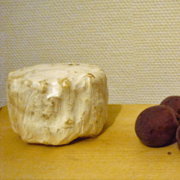 Moose Cheese