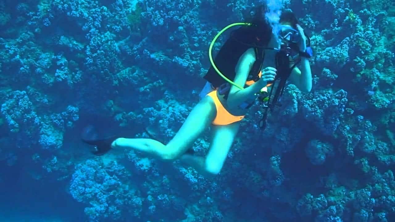 Myrtle Beach scuba diving