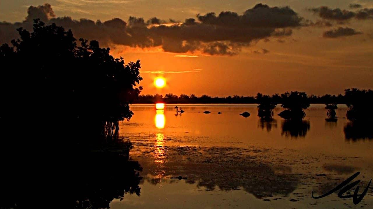 beautiful Florida sunset
